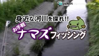 ナマズ釣り ルアー 初心者入門 釣り場選びから釣り方まで[2/3] thumbnail