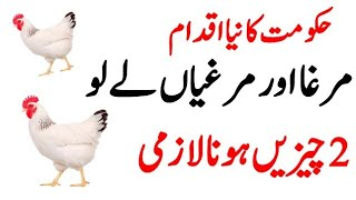 Poultry Farming Business Good Step by Government of Pakistan F…