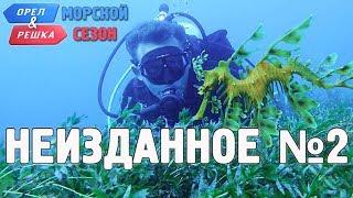 Орёл и Решка. Морской сезон/По морям - Неизданное №2