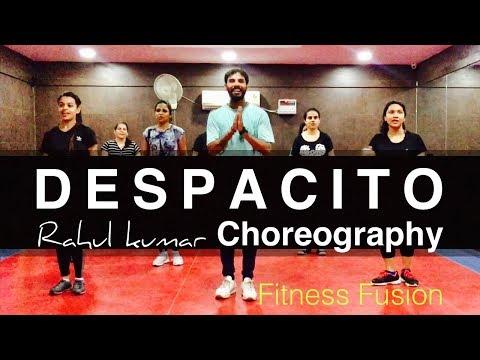 Despacito Cover - Fitness Fusion Zumba Dance  Workout | Despacito Easy Dance Routine
