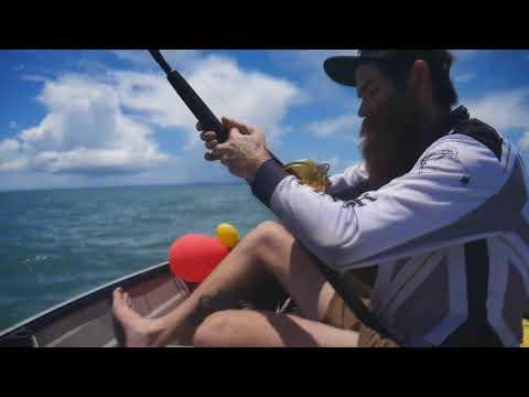 SHARK FISHING Moreton Bay ( Wellington Point )