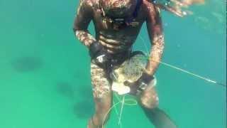 Камбала(В начале охоты на небольшой глубине решил сделать лежку по кефали. В конце, когда уже хотел всплывать замети..., 2012-10-21T16:08:29.000Z)