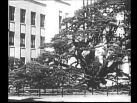 陸軍士官学校(1937年)