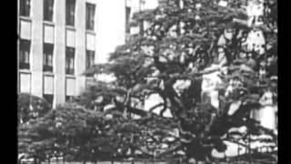日本の戦争映画 : 1930〜