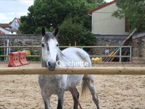 poney villeneuve