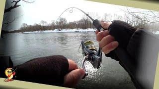 Рыбалка на спиннинг весной Половодье Судак щука