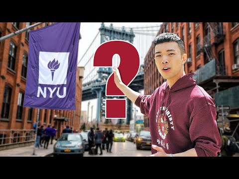 What's It Like Studying In New York City? | NYU Campus Tour