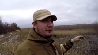 #19 Осенняя Ходовая Охота Курцхаар