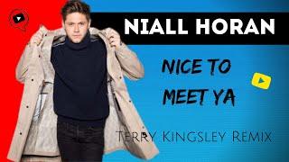 Niall Horan - Nice To Meet Ya (Terry Kingsley Remix)
