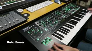Roland System 8 - New Juno 106 Plug Out - SOUNDS & PATCHES