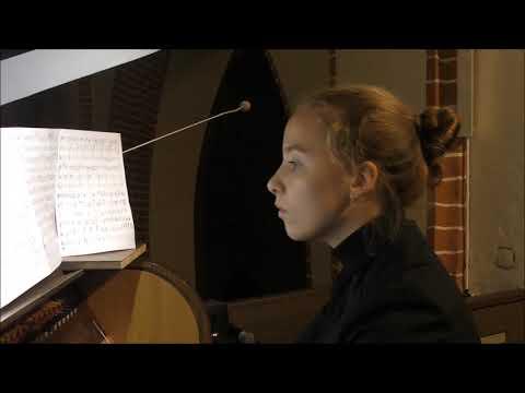 Silvius Leopold Weiss, Ouverture C-moll, Alisa Birula - Organ, Www.luteduo.com