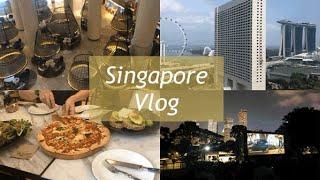 [싱가포르 일상 브이로그] 팬퍼시픽 호텔 방문기 / 모…