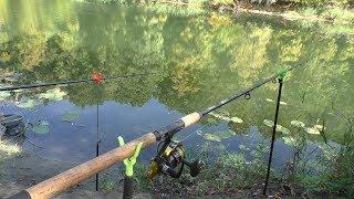 Рыбалка на фидер в сентябре. Отличная рыбалка с мощными поклёвками