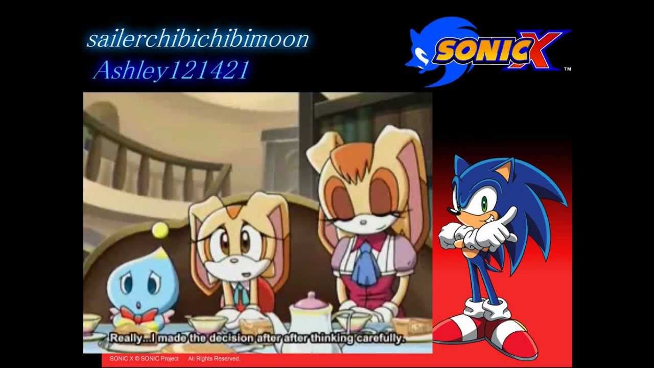 Sonic X Cream And Vanilla