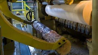 Шпон для фанеры, производство/How to get veneers for plywood(Станок разрезает бревно на шпон толщиной 1 мм, для дальнейшего производства фанеры/The machine cuts the veneer log on 1..., 2016-03-04T05:30:17.000Z)