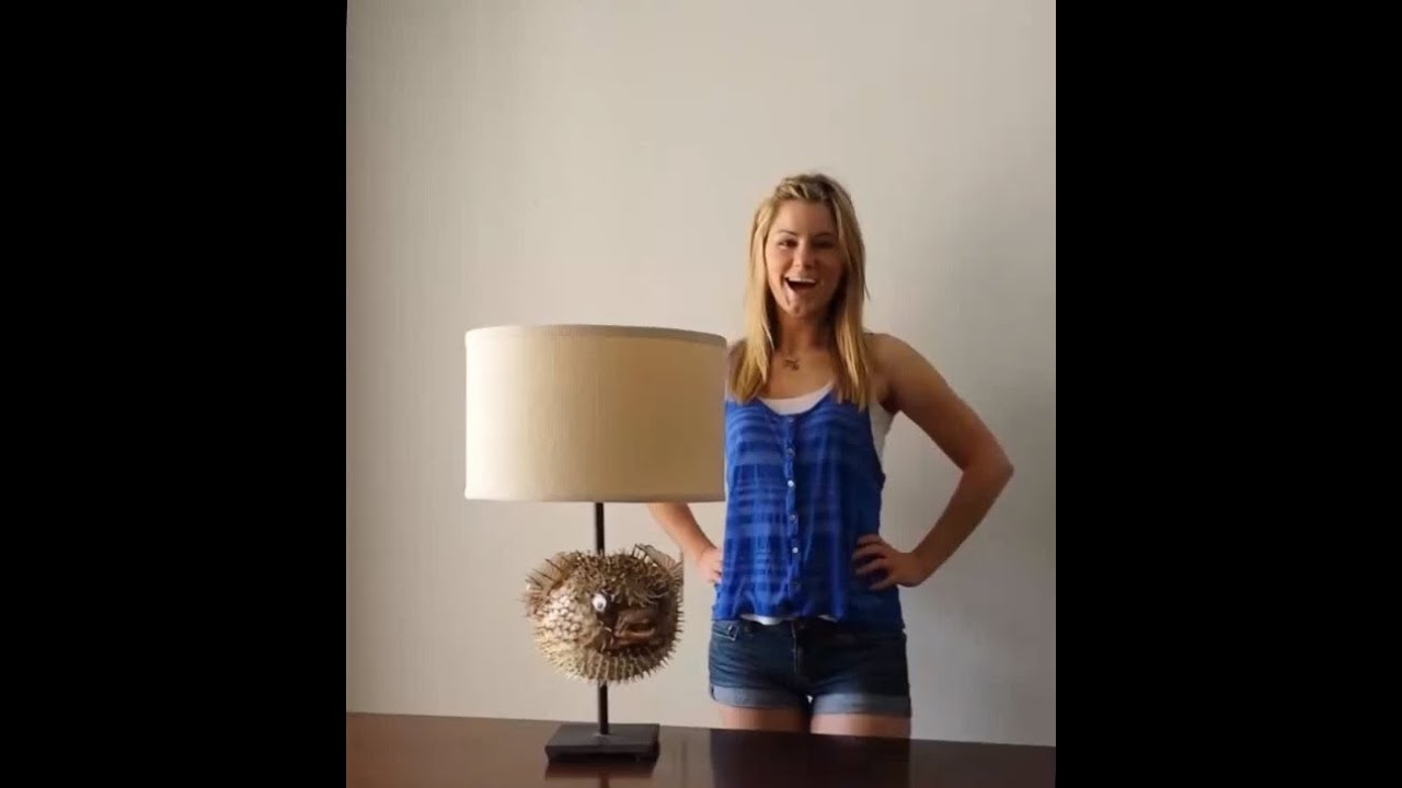 How to make a modern puffer fish lamp youtube for Puffer fish lamp
