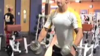 5 Killer Shoulder Exercises (Bodybuilding Workout)