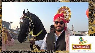 सर्वश्रेष्ठ मारवाड़ी घोड़ा Winner Marwari Stallion Horse : The Best Horse Breed In India