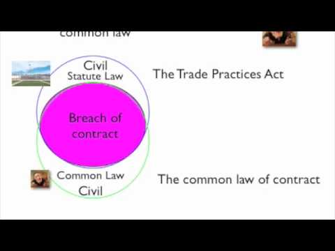 The Legal System Part 2