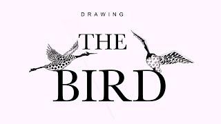 【Drawing】The bird  鳥を描いてみた!