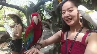 Стеклянный мост и тропический парк Янода на Хайнане, Китай,  Санья!
