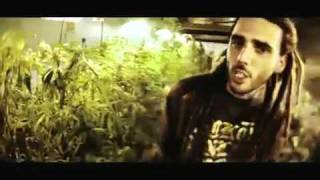Swan Fyahbwoy - Fuma Weed    + !
