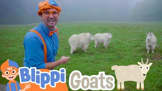 Blippi Explores A Wildlife Park | Learning Animals For Kids
