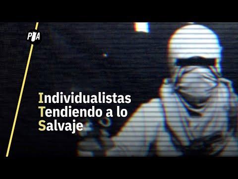 Individualistas Tendiendo a lo Salvaje, un grupo terrorista en México
