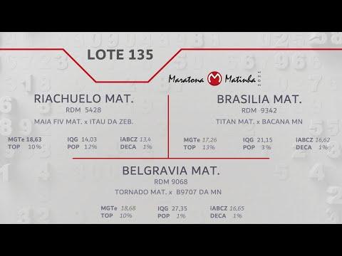 LOTE 135 Maratona Matinha