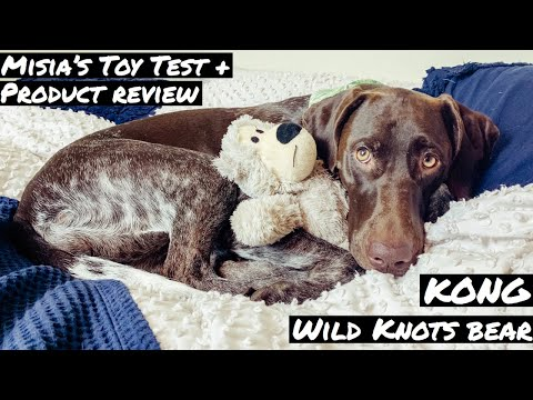 kong-wild-knots-bear-|-dog-toy-review