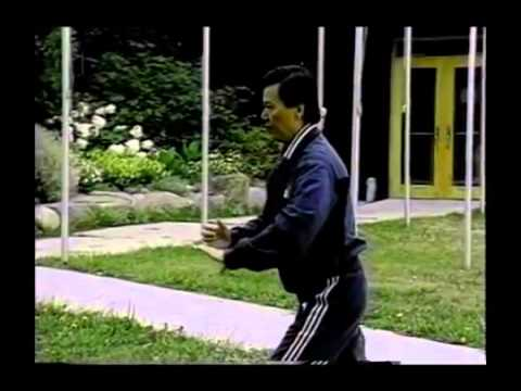 an analysis of the taoism and tai chi Learn how to assess tai chi moves, to understand the energy flow and applications.