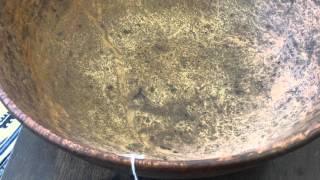 Annual Thanksgiving Sale (Burl Wood Bowl)