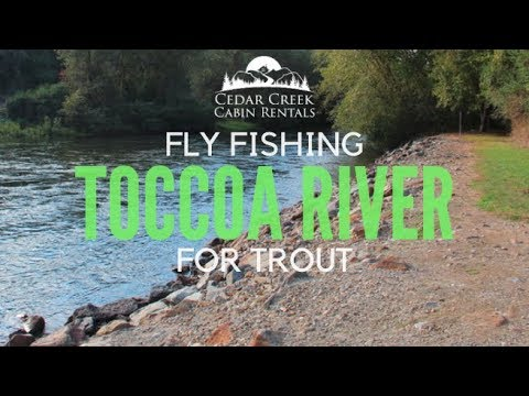 Fly Fishing The Toccoa River