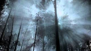Wolves in the Throne Room- Prayer of Transformation