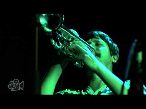Fanfarlo - Ghosts  (Live in Sydney) | Moshcam