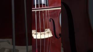 jean pierre lupot 5 string upright bass