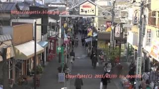 Japan Trip 2015 Tokyo Yanaka ginza  Shopping Street