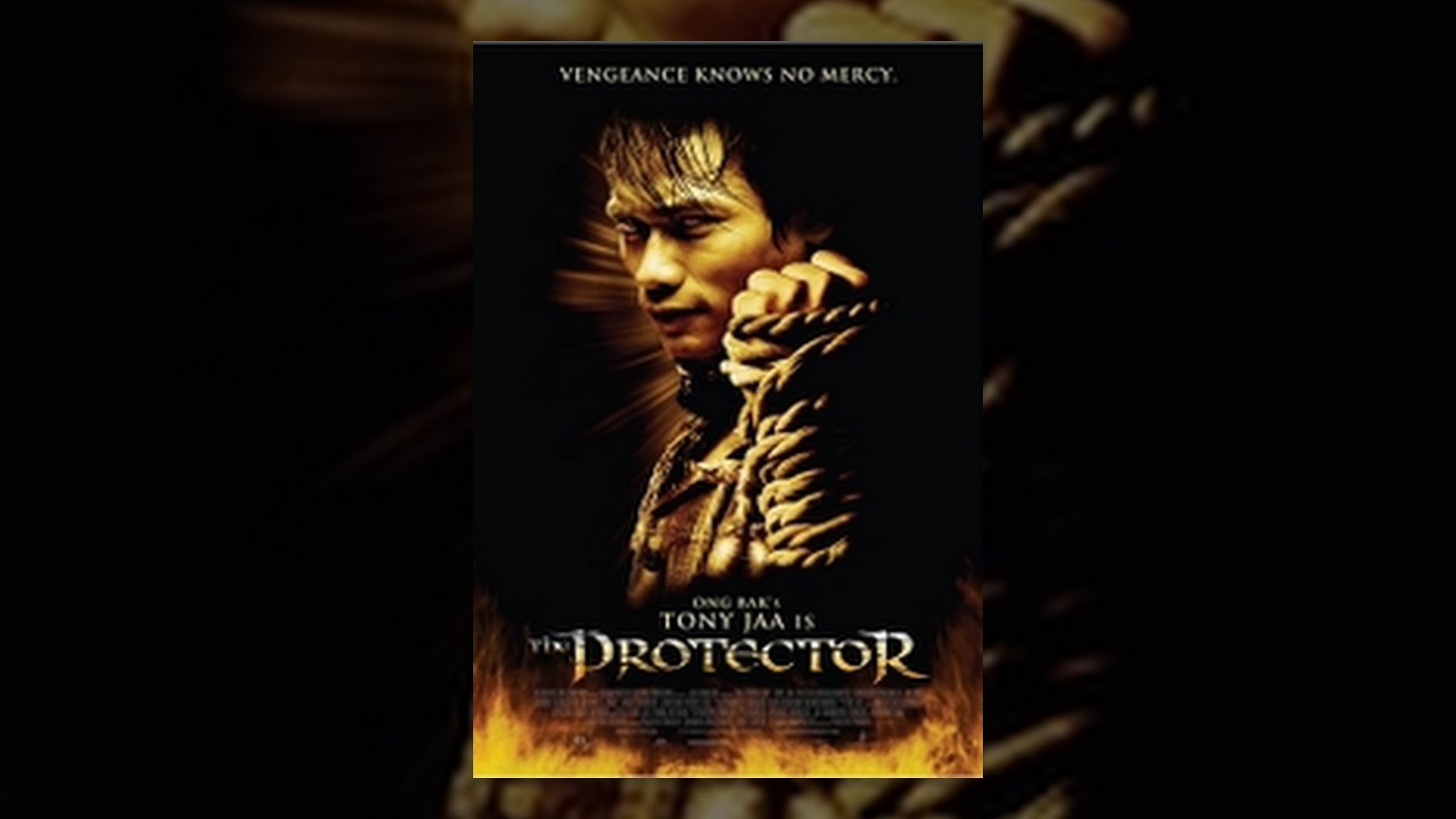 Download The Protector