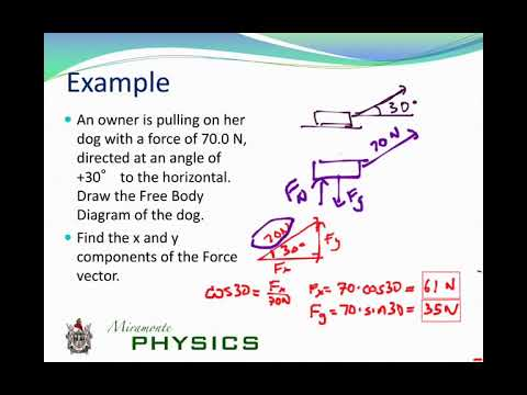 Unit 2: Forces and Newton's First Law