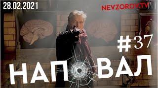 Невзоров. Коктейль «Кровавая Вова» и что будет с Навальным на зоне.
