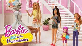 A Smidge of Midge | Barbie LIVE! In the Dreamhouse | Barbie thumbnail