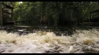 Mavic Pro - Kayaking on the Loxahatchee River (4K)