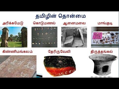 மொழிப்பார்வை - தமிழ் | Tamil | Overview of Tamil Language | Paayiram Aayiram | பாயிரம் ஆயிரம் | Evvi