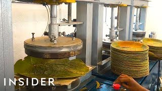 How Leaves Are Made Into Biodegradable Plates