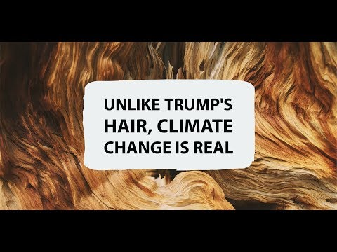 Unlike Trump's Hair, Climate Change is Real