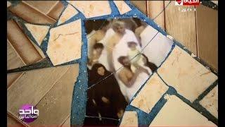 واحد من الناس - مفاجآت جديدة | يكشفها عمرو الليثي في أسرار ظهور صورة حجاج علي أرض منزل بالمنوفية