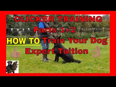 Clicker Training   Parts 1+2 - How to train your dog