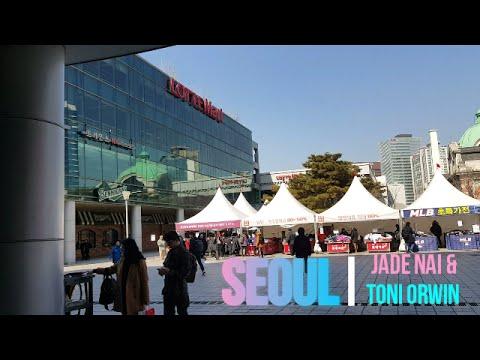 Travel Vlog: Seoul, South Korea # 3   LOTTE MART, DONGDAEMUN, MOWMOW & MYEONGDONG DOG CAFE