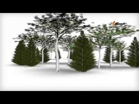 FIBROMER® - Cellulose Fibre Reinforced Polymer