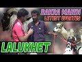 Bakra Mandi lalukhet Latest Update In (urdu/Hindi) video # 7